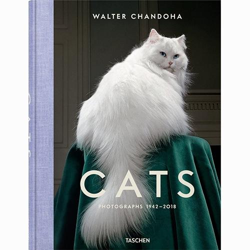9783836573856 Walter Chandoha Cats