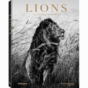 9783961712342 Laurent Baheux Lions