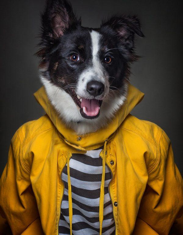 9783961710096 Dog People