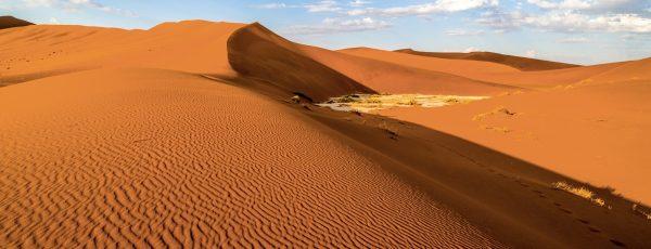 9783832769147 The Namib Desert Art Structures Colors
