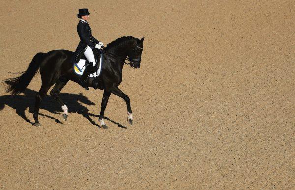 9783961710089 The Equestrian World