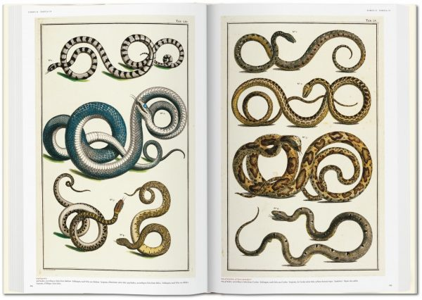 9783836569064 Seba. Cabinet of Natural Curiosities