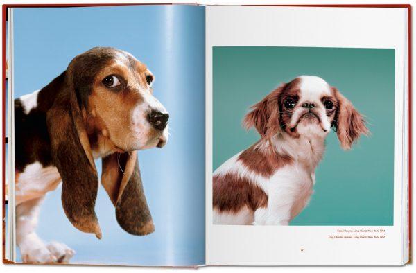9783836584296 Walter Chandoha. Dogs. Photographs 1941–1991